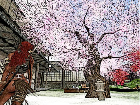 A beautiful blossom tree dominates the court yard